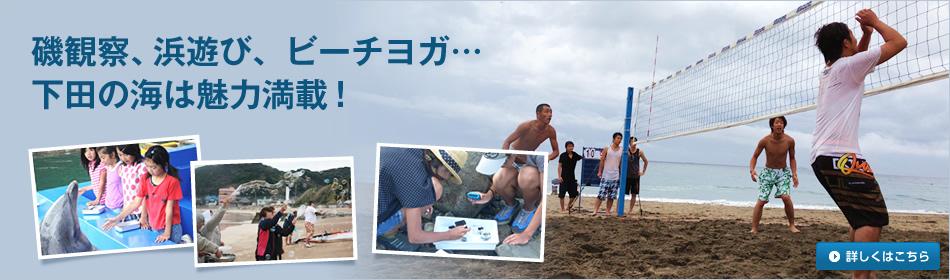 磯観察、浜遊び、ビーチヨガ…下田の海は魅力満載!