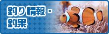 釣り情報・釣果