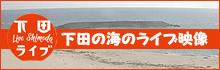下田の海のライブ映像
