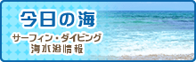 サーフィン・ダイビング・海水浴情報