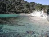 質問鍋田浜
