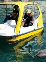 2013ドルフィンウォッチングボート001